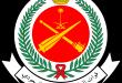 قوات الدفاع الجوي الملكي السعودي